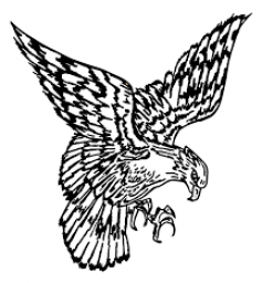 Colman Egan High School mascot