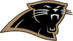 Wright High School mascot