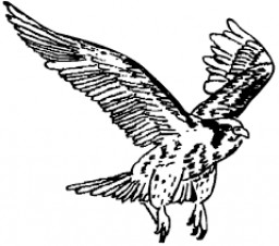 Chief Paul Memorial School mascot