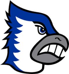 Bondurant Farrar High School mascot