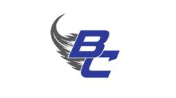 Bellevue Junior Senior High School mascot