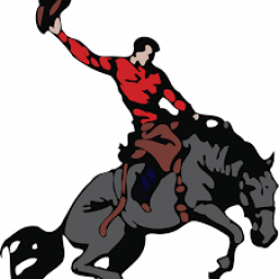 Clarion Goldfield High School mascot
