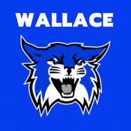 Wallace High School mascot