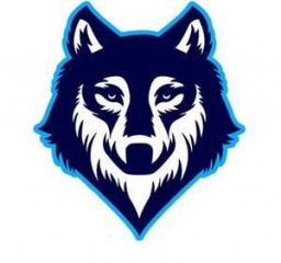 Immaculate Conception High School mascot