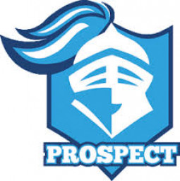 Prospect High School mascot