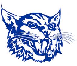 Upton High School mascot