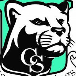 Canyon Springs High School mascot