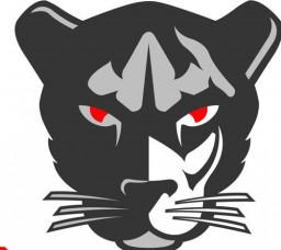 St. Mary High School mascot