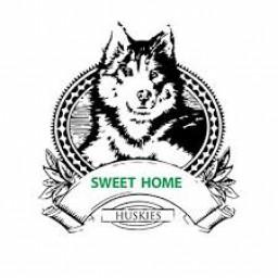 Sweet Home High School mascot