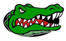 Wisner Pilger High School mascot