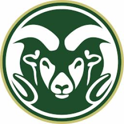 Raymond High School mascot