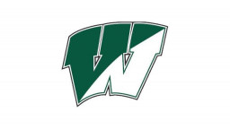 Winslow Township High School mascot