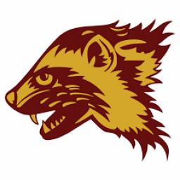 Shaktoolik High School mascot