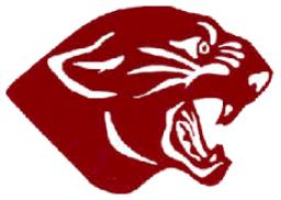 Mount Pleasant Community High School mascot
