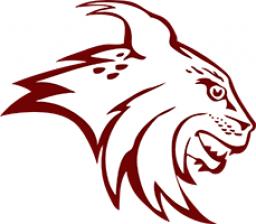 North Linn High School mascot