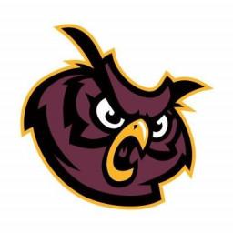 Park Ridge High School mascot