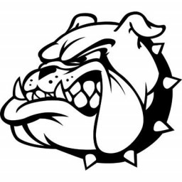 Boyer Valley High School mascot