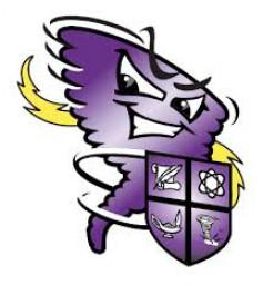 Hoover High School mascot