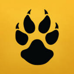 Nenana City High School mascot