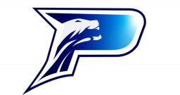 Academy Charter High School mascot