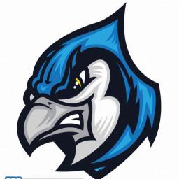 Middlesex High School mascot