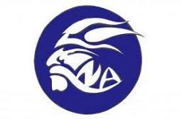 North Arlington High School mascot