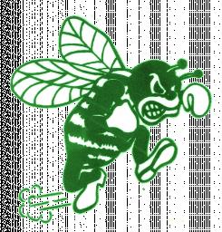 Pemberton Township High School mascot