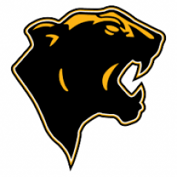 San Simon High School mascot
