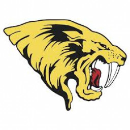 Saguaro High School mascot