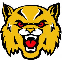 Boron High School mascot