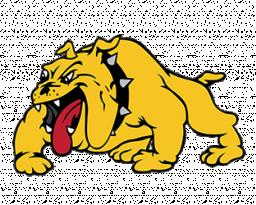 Bettendorf High School mascot