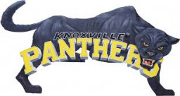 Knoxville High School mascot