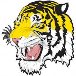 Hazelton Moffit Braddock High School mascot