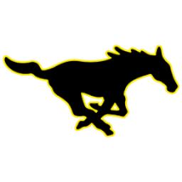 McCool Junction High School mascot