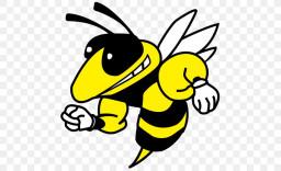 Hanover Park Regional High School mascot